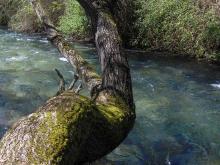 Nei pressi del Ponte di San Francesco fiume Aniene Subiaco